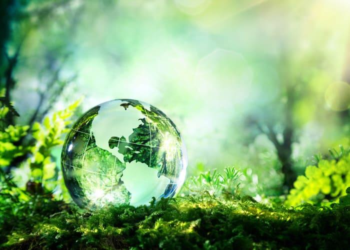image développement durable